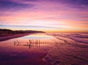 New Zealand Beach Sunrise