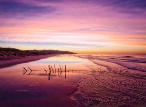 New Zealand Beach Sunrise